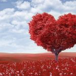 Heart tree red field